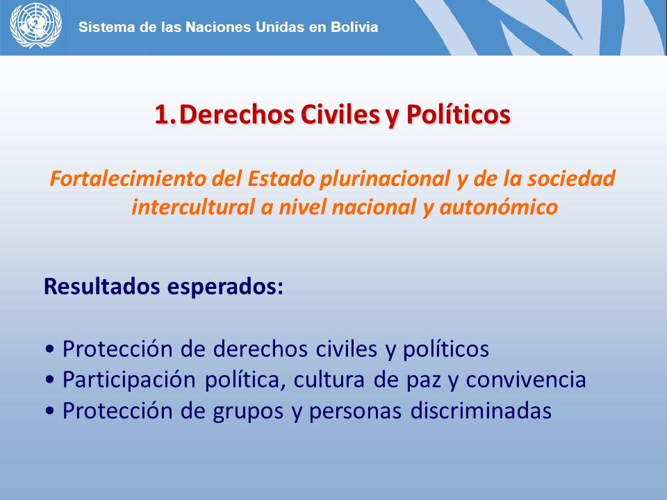 1.Derechos Civiles y Políticos Fortalecimiento del Estado plurinacional y de la sociedad intercultural a nivel nacional y autonómico Resultados esperados: Protección de derechos civiles y políticos Participación política, cultura de paz y convivencia Protección de grupos y personas discriminadas Sistema de las Naciones Unidas en Bolivia