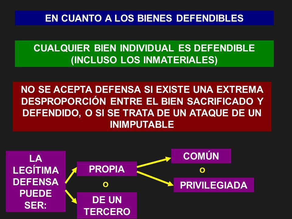 EN CUANTO A LOS BIENES DEFENDIBLES CUALQUIER BIEN INDIVIDUAL ES DEFENDIBLE (INCLUSO LOS INMATERIALES) NO SE ACEPTA DEFENSA SI EXISTE UNA EXTREMA DESPR