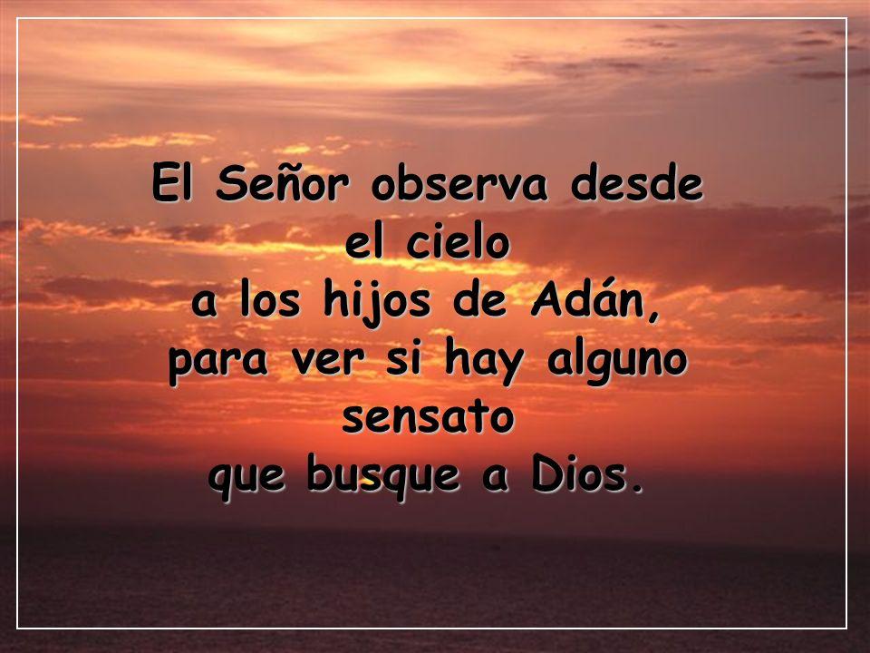 El Señor observa desde el cielo a los hijos de Adán, para ver si hay alguno sensato que busque a Dios.