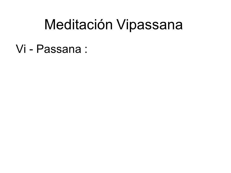 Meditación Vipassana Vi - Passana :
