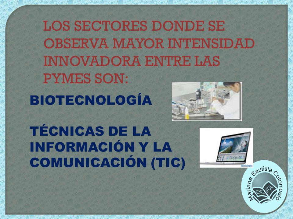 LOS SECTORES DONDE SE OBSERVA MAYOR INTENSIDAD INNOVADORA ENTRE LAS PYMES SON: BIOTECNOLOGÍA TÉCNICAS DE LA INFORMACIÓN Y LA COMUNICACIÓN (TIC)