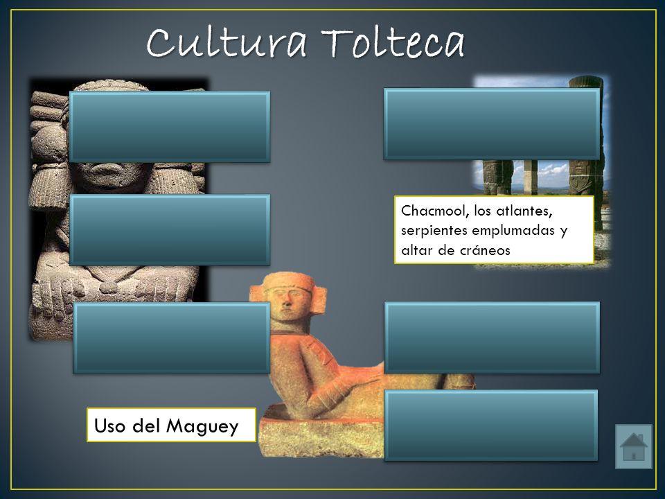 Cultura Tolteca Objetos y bebidas (Pulque) Uso del Maguey Tula Hidalgo Ubicación Incensarioo Chacmool, los atlantes, serpientes emplumadas y altar de