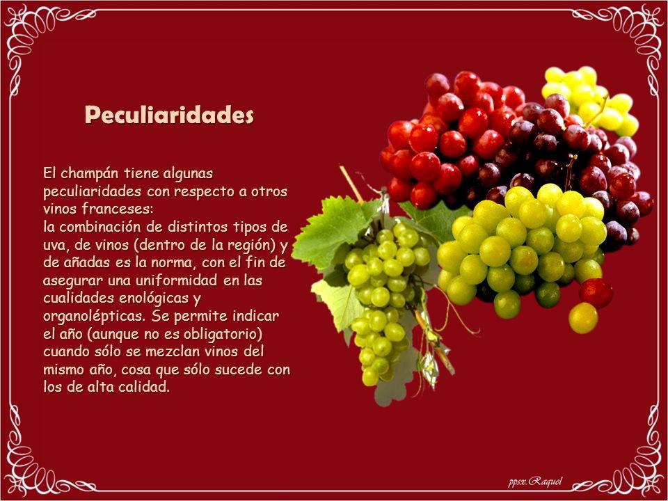 Peculiaridades El champán tiene algunas peculiaridades con respecto a otros vinos franceses: la combinación de distintos tipos de uva, de vinos (dentro de la región) y de añadas es la norma, con el fin de asegurar una uniformidad en las cualidades enológicas y organolépticas.