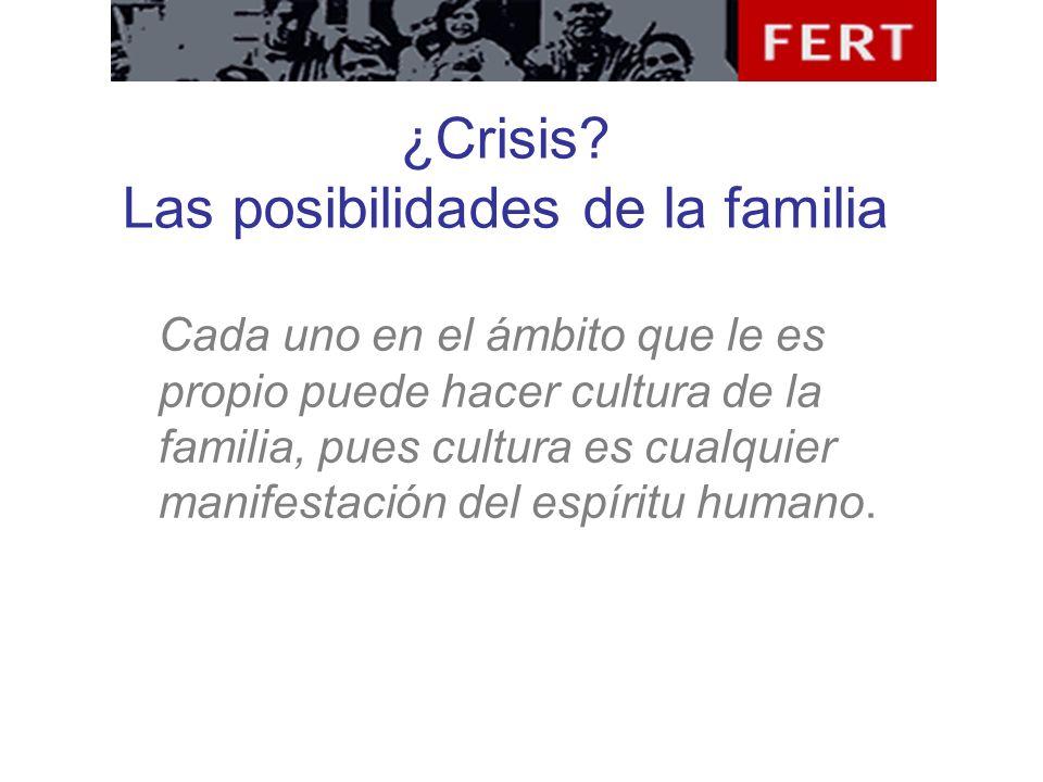 ¿Crisis? Las posibilidades de la familia Cada uno en el ámbito que le es propio puede hacer cultura de la familia, pues cultura es cualquier manifesta