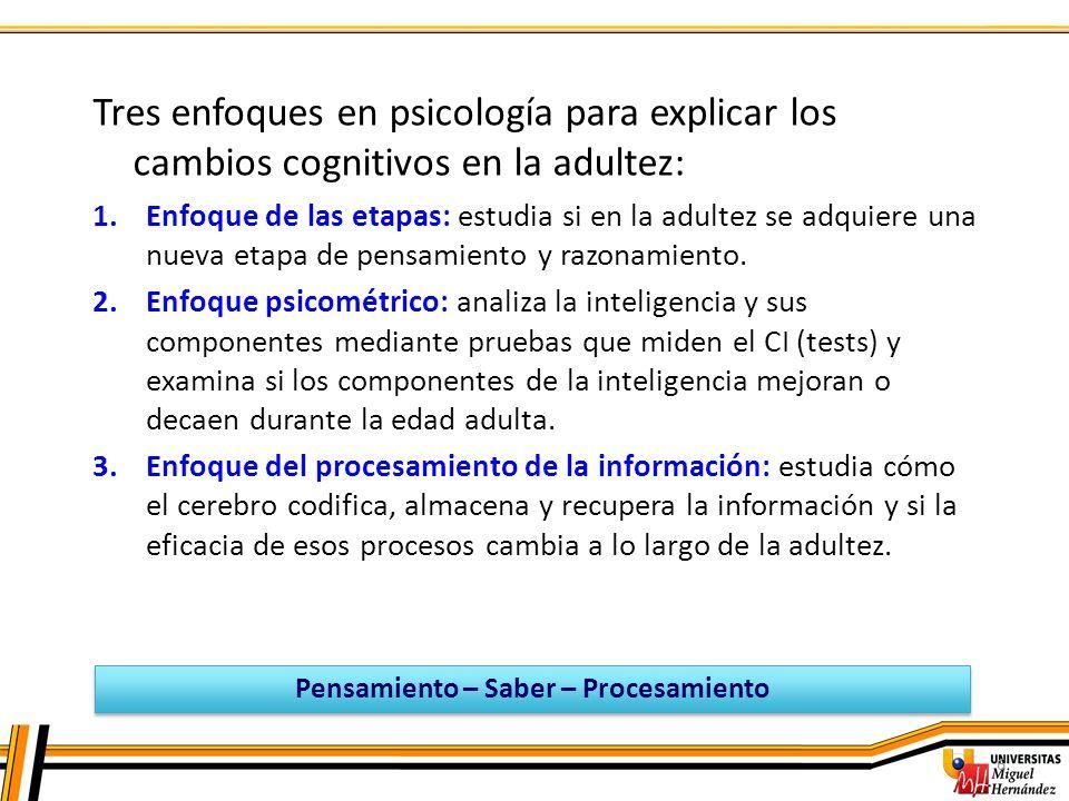 7 Al comienzo de la adultez temprana (20-25 años) la cognición se modifica en: Cantidad: almacenamiento de más conocimientos.