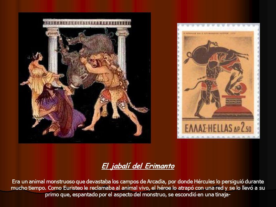 El jabalí del Erimanto Era un animal monstruoso que devastaba los campos de Arcadia, por donde Hércules lo persiguió durante mucho tiempo. Como Eurist