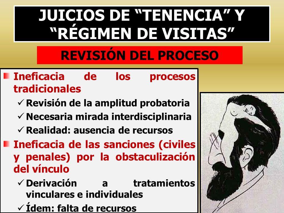 JUICIOS DE TENENCIA Y RÉGIMEN DE VISITAS Ineficacia de los procesos tradicionales Revisión de la amplitud probatoria Necesaria mirada interdisciplinar