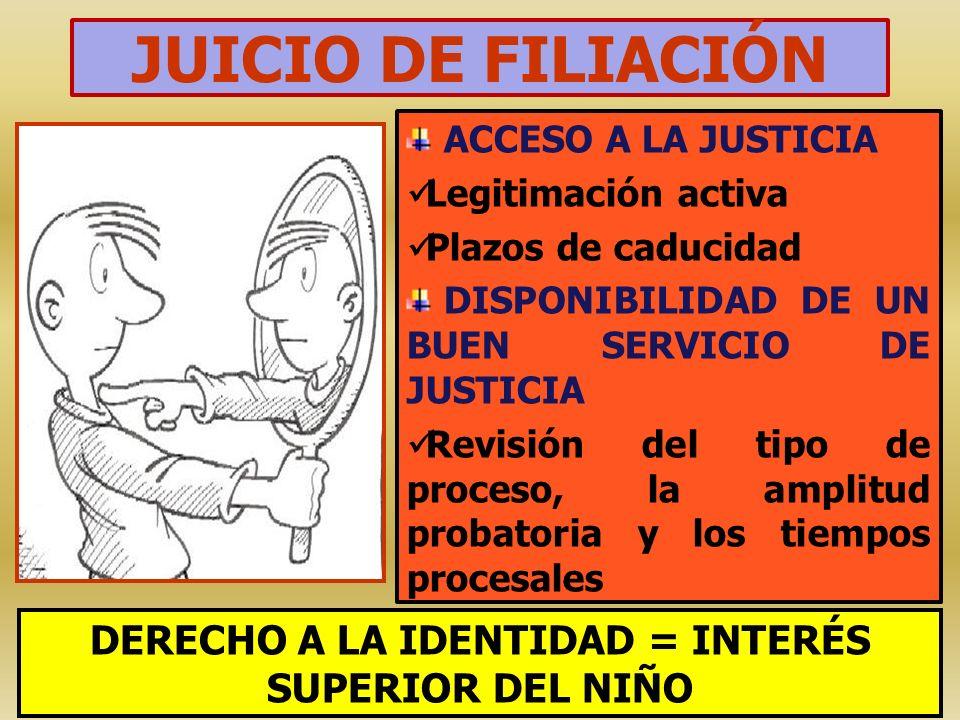 JUICIO DE FILIACIÓN ACCESO A LA JUSTICIA Legitimación activa Plazos de caducidad DISPONIBILIDAD DE UN BUEN SERVICIO DE JUSTICIA Revisión del tipo de p