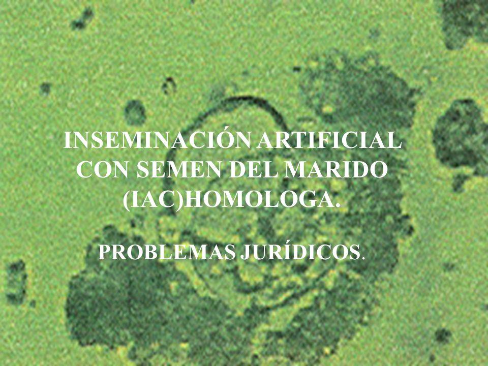 6 INSEMINACIÓN ARTIFICIAL CON SEMEN DEL MARIDO (IAC)HOMOLOGA. PROBLEMAS JURÍDICOS.