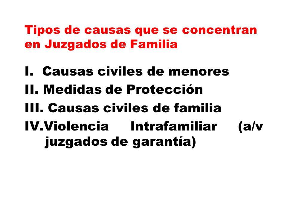Tipos de causas que se concentran en Juzgados de Familia I. Causas civiles de menores II. Medidas de Protección III. Causas civiles de familia IV.Viol