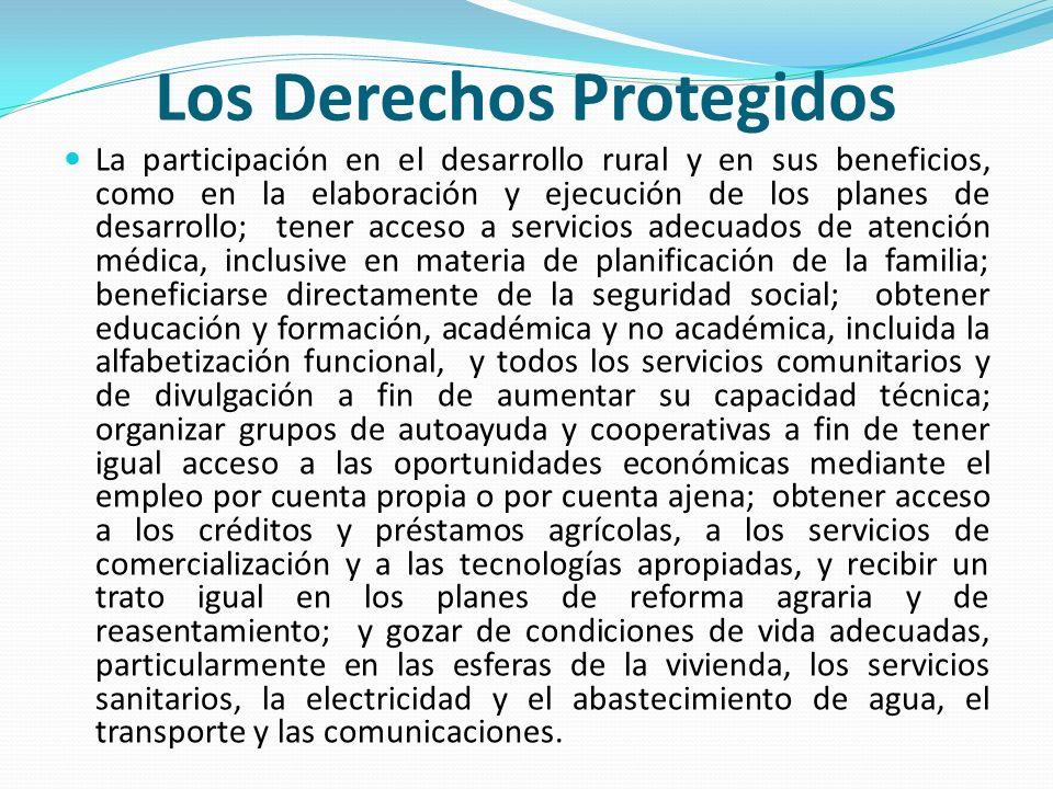 La participación en el desarrollo rural y en sus beneficios, como en la elaboración y ejecución de los planes de desarrollo; tener acceso a servicios