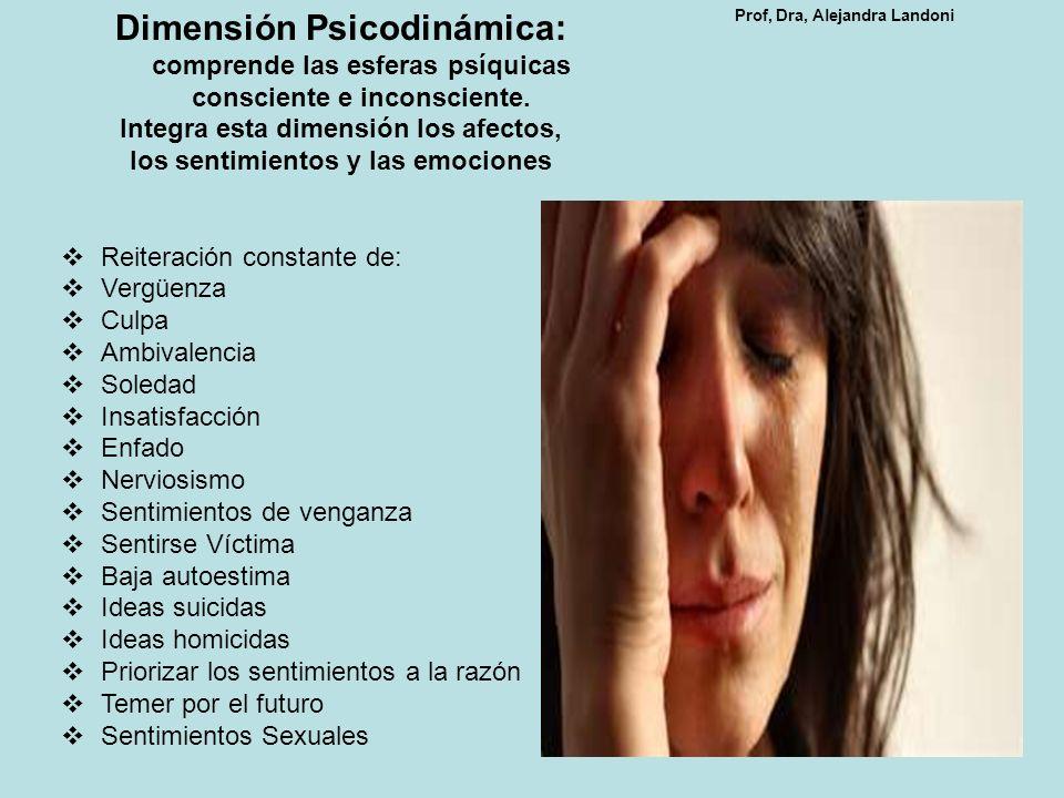 Dimensión Psicodinámica: comprende las esferas psíquicas consciente e inconsciente. Integra esta dimensión los afectos, los sentimientos y las emocion
