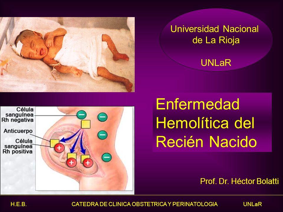 H.E.B. CATEDRA DE CLINICA OBSTETRICA Y PERINATOLOGIA UNLaR Enfermedad Hemolítica del Recién Nacido Prof. Dr. Héctor Bolatti Universidad Nacional de La