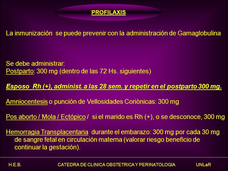 H.E.B. CATEDRA DE CLINICA OBSTETRICA Y PERINATOLOGIA UNLaR La inmunización se puede prevenir con la administración de Gamaglobulina Se debe administra