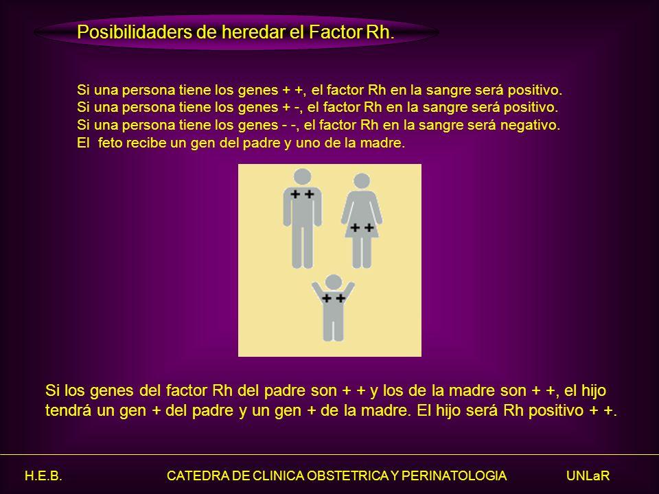 H.E.B. CATEDRA DE CLINICA OBSTETRICA Y PERINATOLOGIA UNLaR Si una persona tiene los genes + +, el factor Rh en la sangre será positivo. Si una persona