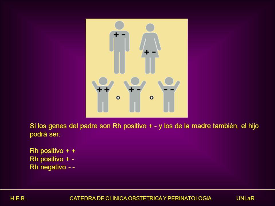 H.E.B. CATEDRA DE CLINICA OBSTETRICA Y PERINATOLOGIA UNLaR Si los genes del padre son Rh positivo + - y los de la madre también, el hijo podrá ser: Rh