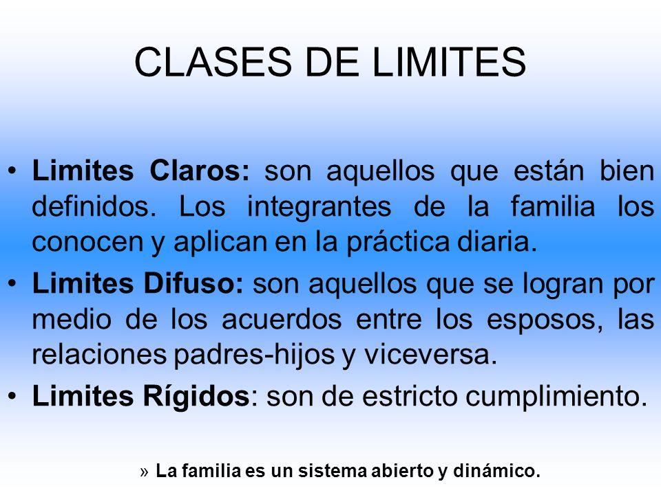 Limites Claros: son aquellos que están bien definidos. Los integrantes de la familia los conocen y aplican en la práctica diaria. Limites Difuso: son