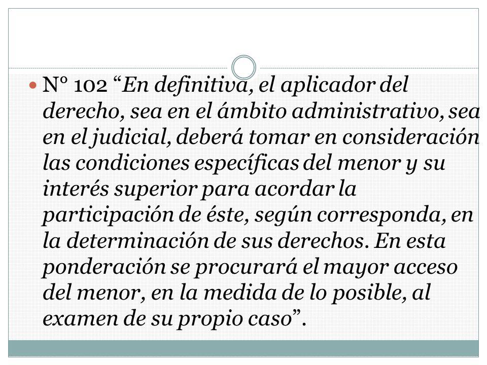 N° 102 En definitiva, el aplicador del derecho, sea en el ámbito administrativo, sea en el judicial, deberá tomar en consideración las condiciones esp