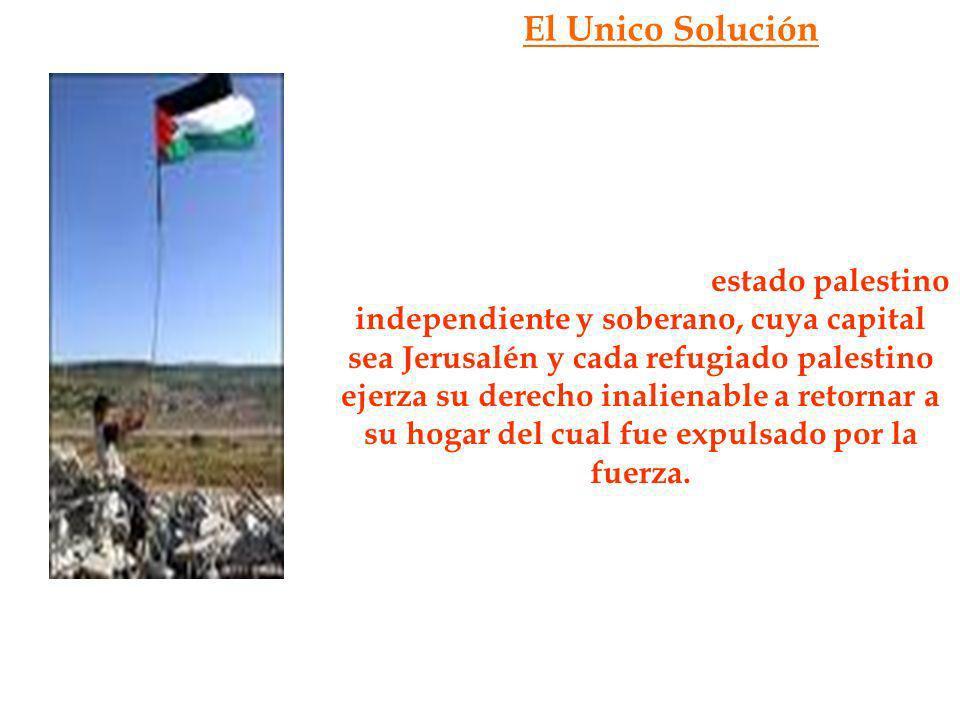 El Unico Solución Finalmente, luego de todo el recorrido histórico del conflicto, se llega a una sola conclusión, que es lo que todo el pueblo palesti