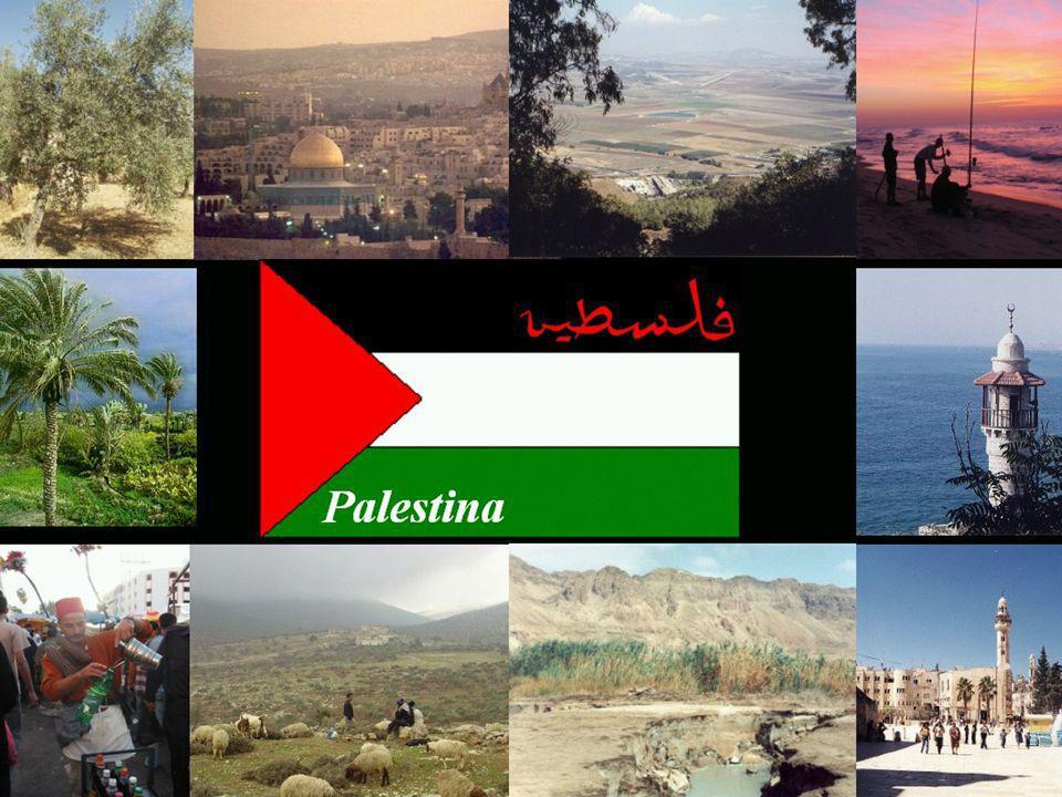 Mapa de la ubicación de los Refugiados Palestinos (cifras oficiales de la UNRWA, 2004) Porcentaje de la población total de cada zona que son refugiados palestinos: Gaza: 84,5% de la población Cisjordania: 32,6% de la población Jordania: 74,8% de la población Líbano: 11,5% de la población Siria: 2,7% de la población Actualmente se calcula que los refugiados palestinos son casi 5 millones de personas.