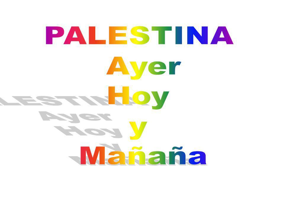 Autoridad Nacional Palestina 1 eras Eleccions Presidencials y del Consejo Legislativo Palestino En 1996 se constituyó la Autoridad Nacional Palestina, presidida por Yasir Arafat, con sede en Jericó, que tiene competencias similares a las de un gobierno local (cultura, educación, sanidad, impuestos...) excepto en materia de seguridad - salvo en una pequeña parte de Gaza y Cisjordania- y de relaciones exteriores.