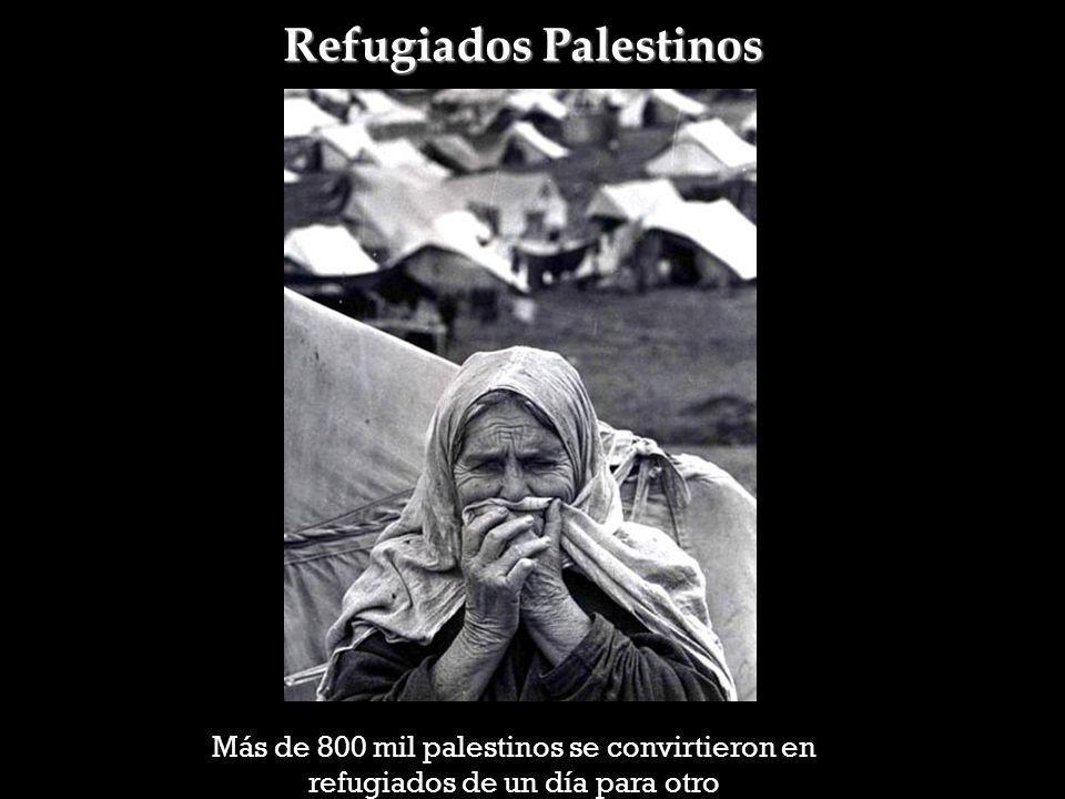 Refugiados Palestinos Más de 800 mil palestinos se convirtieron en refugiados de un día para otro