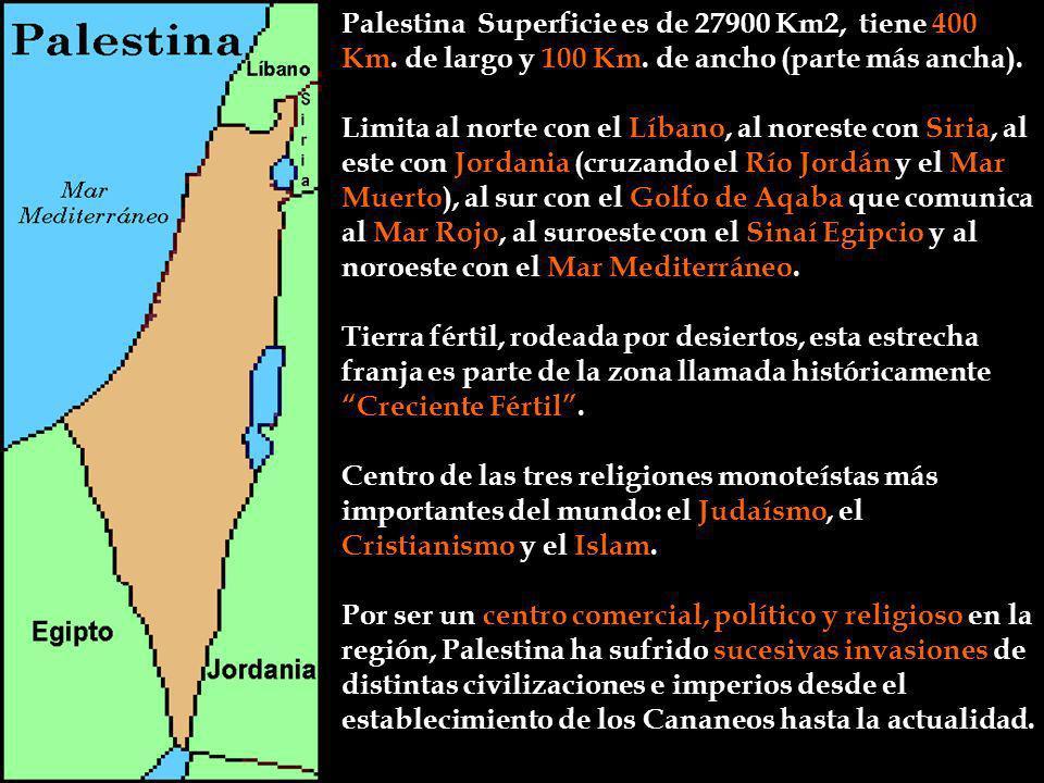 Palestina Superficie es de 27900 Km2, tiene 400 Km. de largo y 100 Km. de ancho (parte más ancha). Tierra fértil, rodeada por desiertos, esta estrecha
