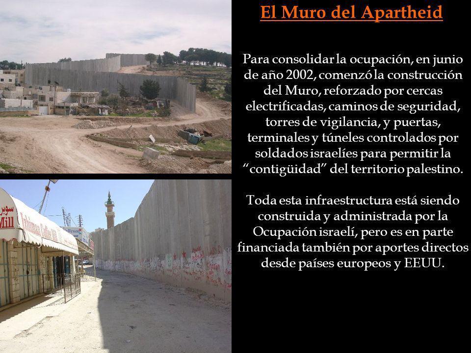 El Muro del Apartheid Para consolidar la ocupación, en junio de año 2002, comenzó la construcción del Muro, reforzado por cercas electrificadas, camin
