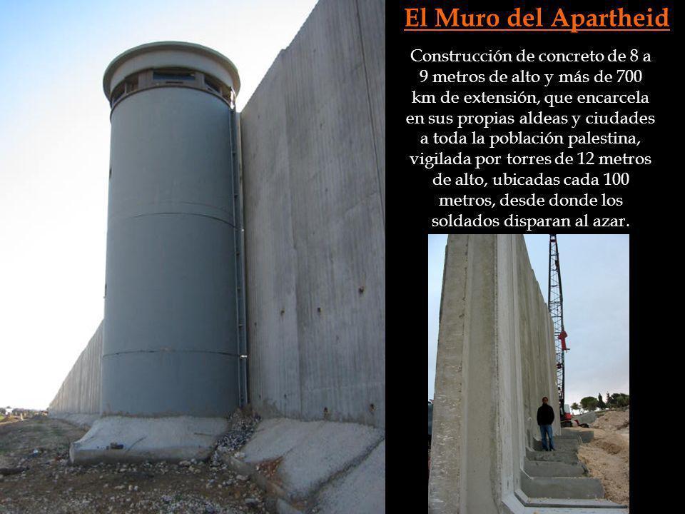 El Muro del Apartheid Construcción de concreto de 8 a 9 metros de alto y más de 700 km de extensión, que encarcela en sus propias aldeas y ciudades a