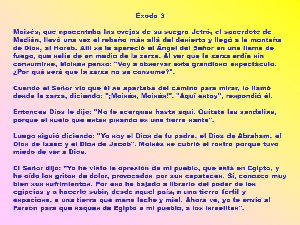 Éxodo 3 Moisés, que apacentaba las ovejas de su suegro Jetró, el sacerdote de Madián, llevó una vez el rebaño más allá del desierto y llegó a la monta