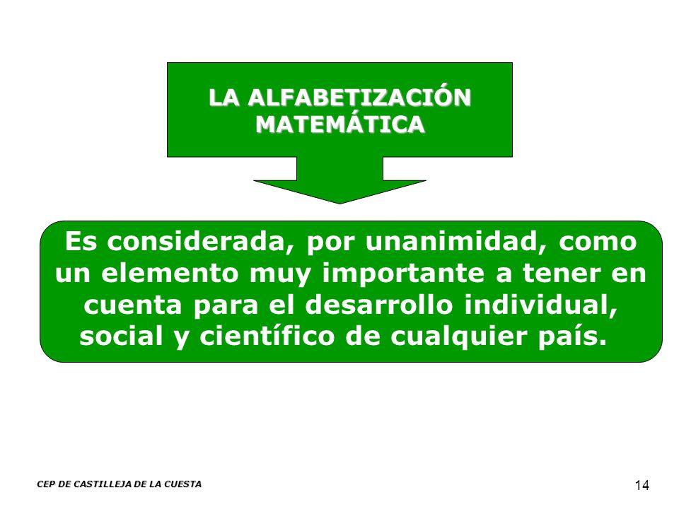 CEP DE CASTILLEJA DE LA CUESTA 14 LA ALFABETIZACIÓN MATEMÁTICA Es considerada, por unanimidad, como un elemento muy importante a tener en cuenta para