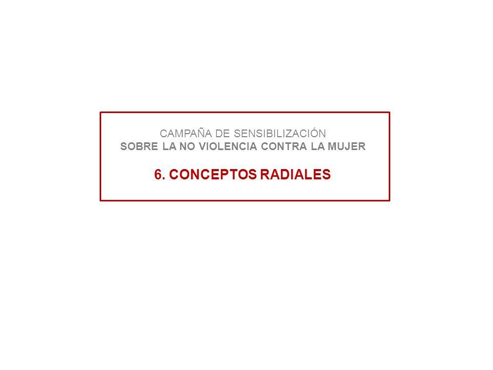 CAMPAÑA DE SENSIBILIZACIÓN SOBRE LA NO VIOLENCIA CONTRA LA MUJER 6. CONCEPTOS RADIALES