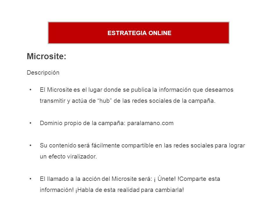 ESTRATEGIA ONLINE Microsite: Descripción El Microsite es el lugar donde se publica la información que deseamos transmitir y actúa de hub de las redes sociales de la campaña.