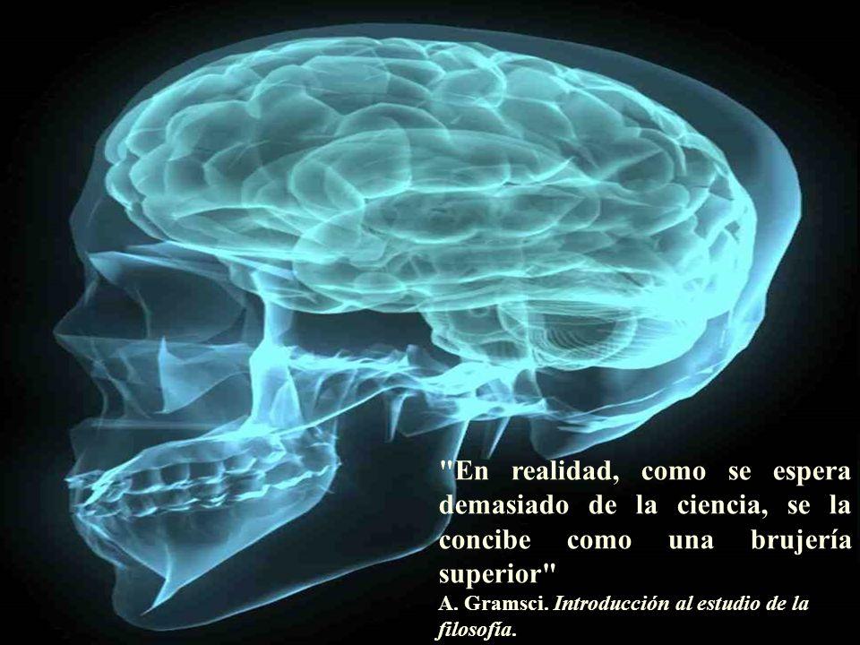 DESOCIALIZAR O SOFRIMENTO 3 Fetichismos: coisificação do paciente e personificação das nosologias e os medicamentos.