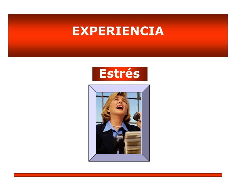 EXPERIENCIA Estrés
