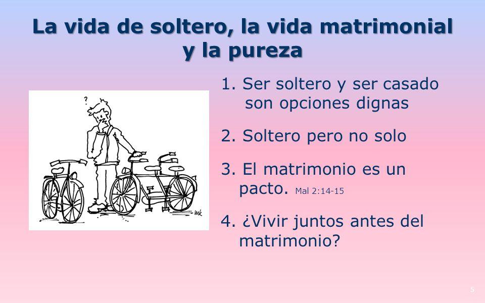La vida de soltero, la vida matrimonial y la pureza 5 1.