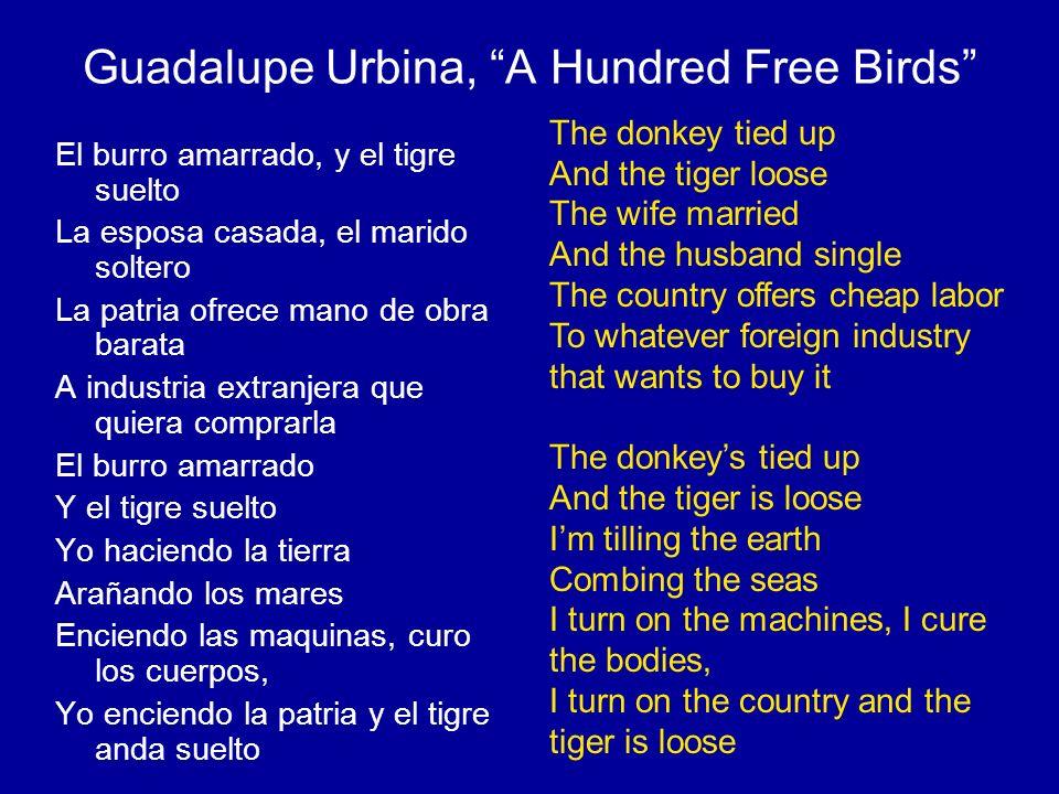 Guadalupe Urbina, A Hundred Free Birds El burro amarrado, y el tigre suelto La esposa casada, el marido soltero La patria ofrece mano de obra barata A