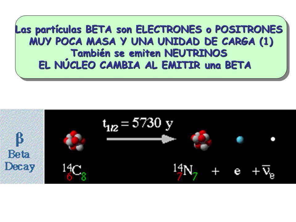 Las partículas BETA son ELECTRONES o POSITRONES MUY POCA MASA Y UNA UNIDAD DE CARGA (1) También se emiten NEUTRINOS EL NÚCLEO CAMBIA AL EMITIR una BET