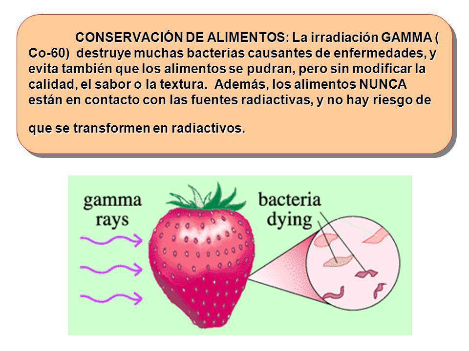 CONSERVACIÓN DE ALIMENTOS: La irradiación GAMMA ( Co-60) destruye muchas bacterias causantes de enfermedades, y evita también que los alimentos se pud