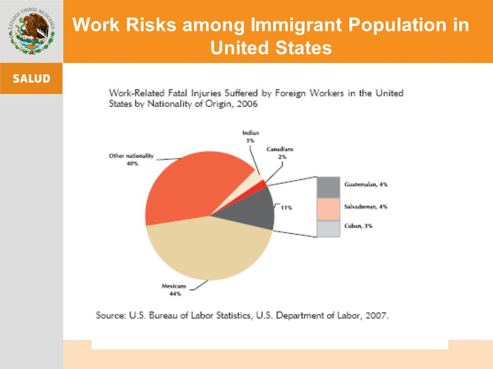 Work Risks among Immigrant Population in United States