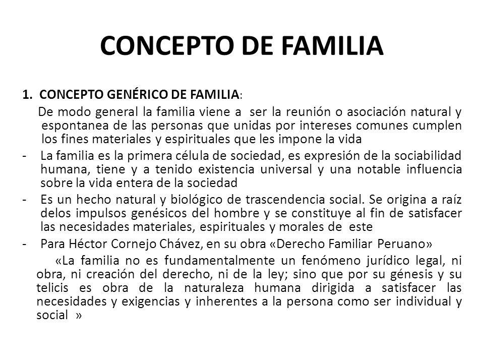 PARENTESCO CONSANGUINEO DEL SEGUNDO GRADO EN LINEA COLATERAL (HERMANOS ENTRE SI)