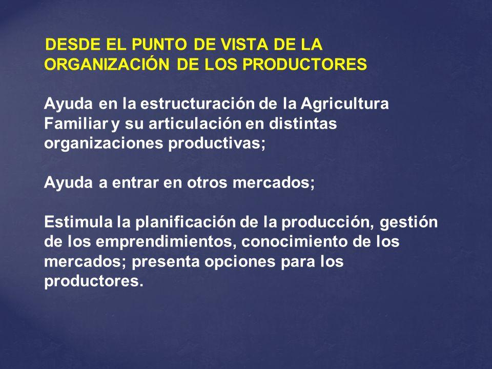 DESDE EL PUNTO DE VISTA DE LA ORGANIZACIÓN DE LOS PRODUCTORES Ayuda en la estructuración de la Agricultura Familiar y su articulación en distintas org