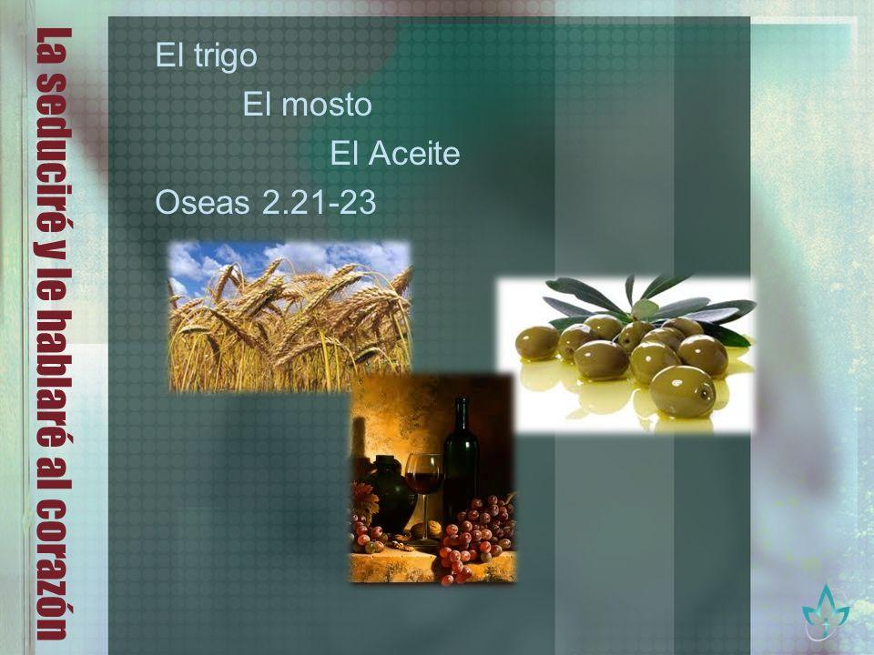 La seduciré y le hablaré al corazón El trigo El mosto El Aceite Oseas 2.21-23