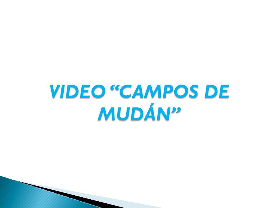 VIDEO CAMPOS DE MUDÁN