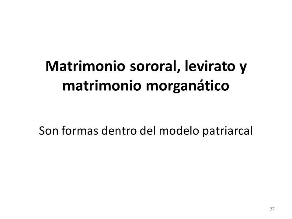 Matrimonio sororal, levirato y matrimonio morganático Son formas dentro del modelo patriarcal 37