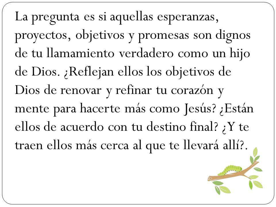 La pregunta es si aquellas esperanzas, proyectos, objetivos y promesas son dignos de tu llamamiento verdadero como un hijo de Dios. ¿Reflejan ellos lo