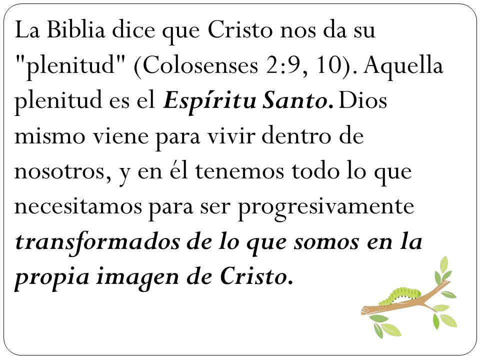 La Biblia dice que Cristo nos da su