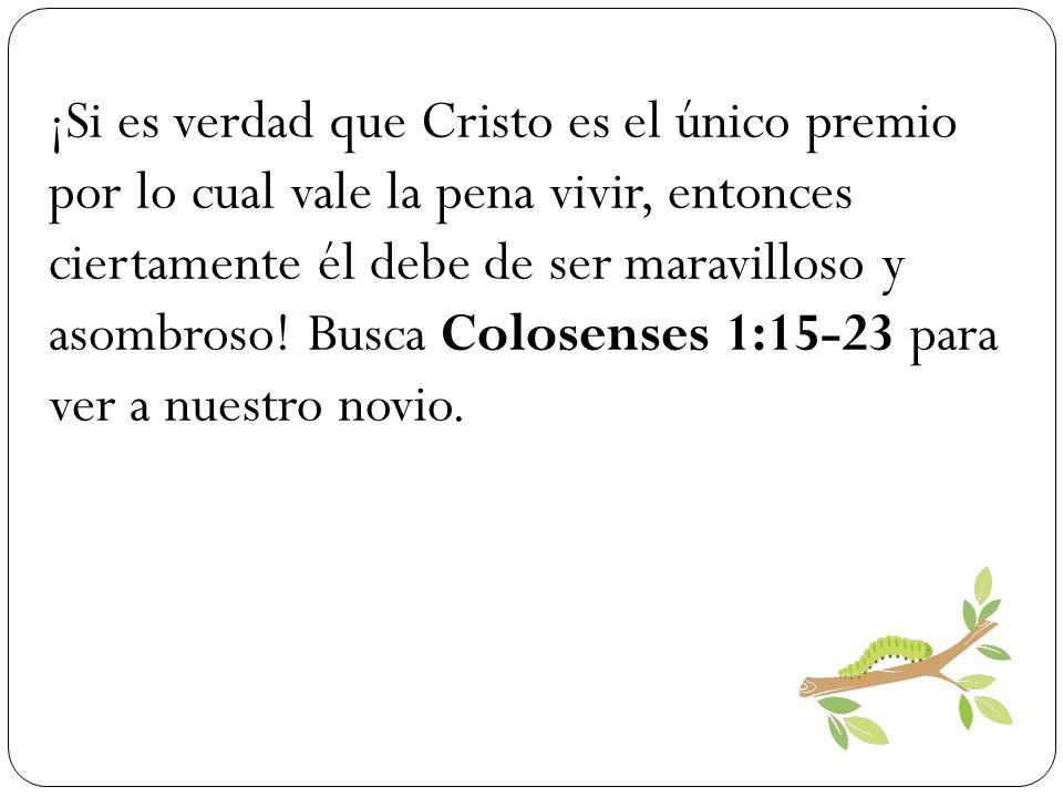 ¡Si es verdad que Cristo es el único premio por lo cual vale la pena vivir, entonces ciertamente él debe de ser maravilloso y asombroso! Busca Colosen