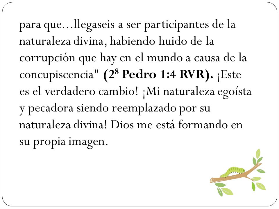 Dejando objetivos de comodidad personal y autorrealización, comienzo a extender la mano hacia Cristo, deseando cada vez parecerme más a él.