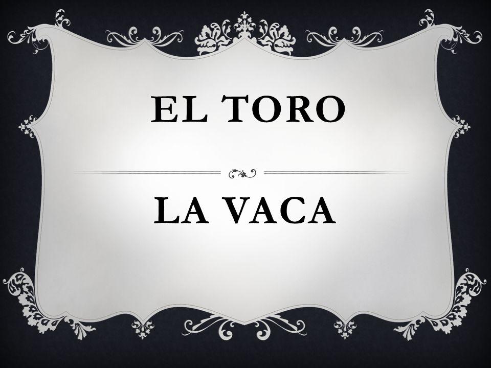 LA VACA EL TORO